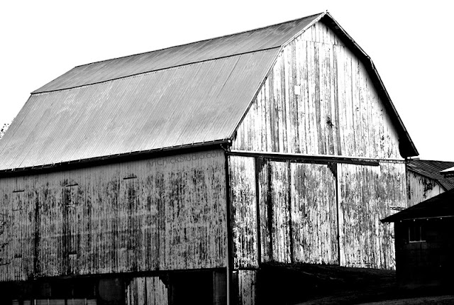 WIde Barn Digital Photo bw