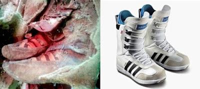 Tin nóng Xác ướp 15000 tuổi du mang  giày thể thao Adidas?
