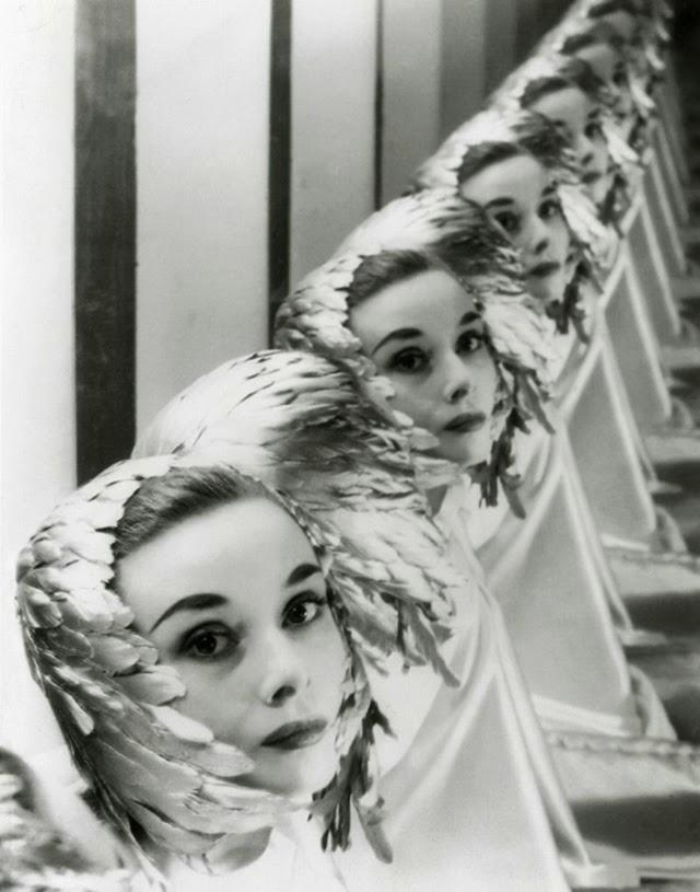 1950 s beefcake nude models galleries