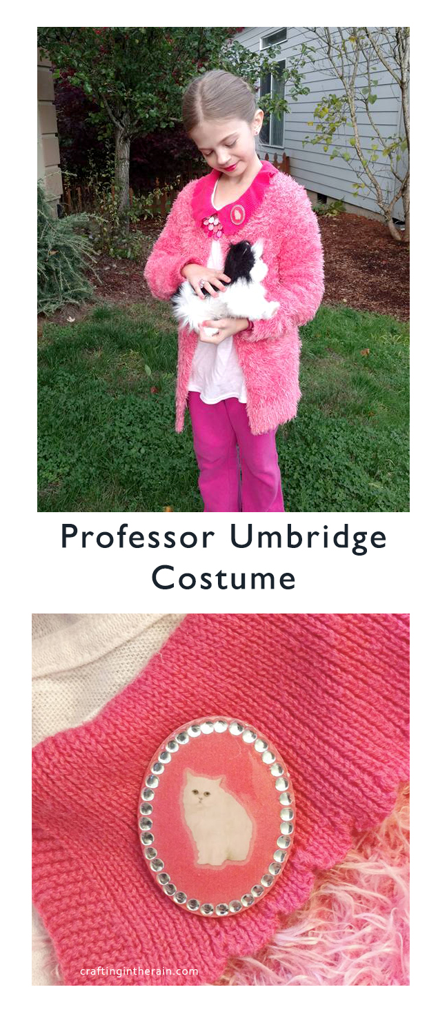 Dementor Costume Trelawney Costume And Umbridge Costume