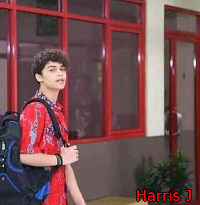 Harris J pemeran Harris