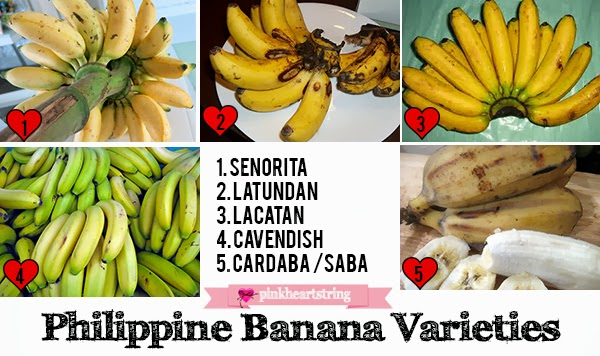 philippine banana varieties