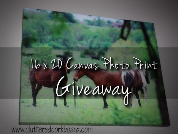 A GIVEAWAY For a Canvas Print From Canvas Factory