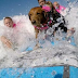 Τα κύματα της δύναμης από ένα σκύλο...