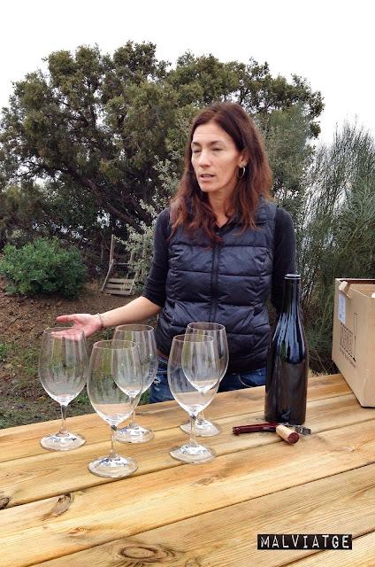 vinya sara perez