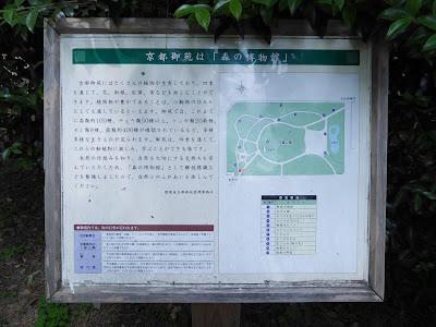 京都御苑は「森の博物館」