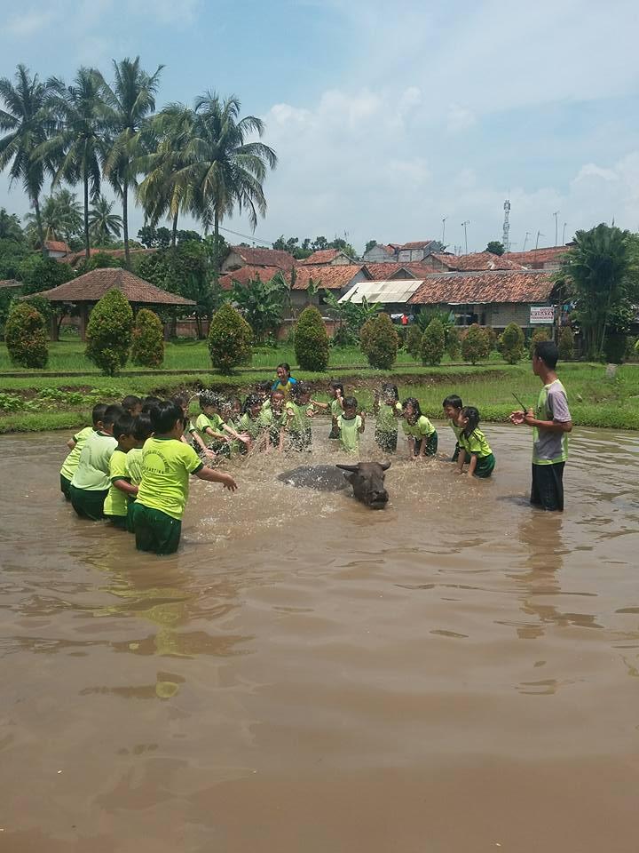 Image Result For Wisata Edukasi Anak Di Bogora