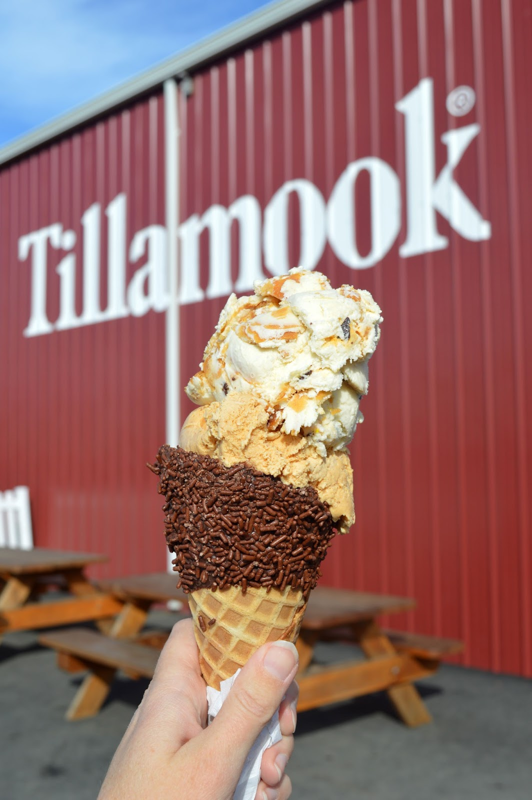 See The Tillamook Cheese Factorys Site Here For More About Factory And When It Will Be Completed