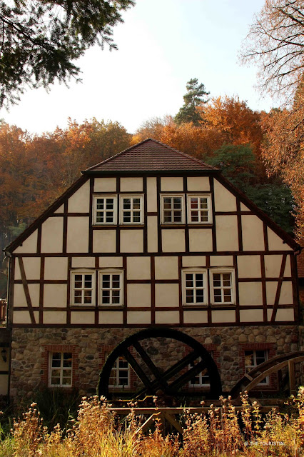 Travel Germany - Perfect Indian Summer at the Tornowsee in Brandenburg