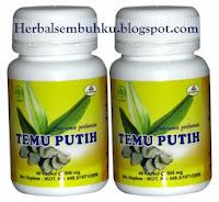 TEMU PUTIH Obat herbal kanker kista mioma Surabaya | 085755201000 | Jual Temu Putih obat herbal kanker Surabaya Sidoarjo Mojokerto Gresik Lamongan Jombang Pare Kediri