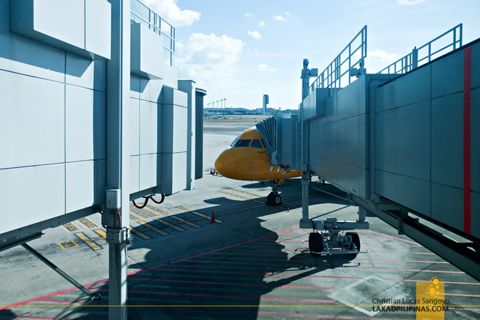 Scoot Review Manila to Singapore to Australia