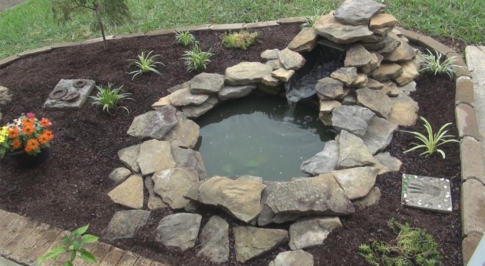 kolam ikan kecil