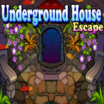 Play Games4King Underground Ho…