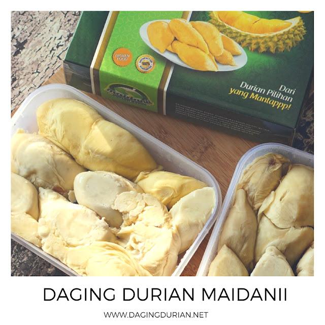 agen-daging-durian-medan-terenak-di_22