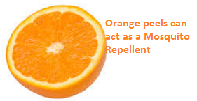 Orange peels can act as a Mosquito Repellent - Oranges citrus fruit peel (Santre Ke Chilke)