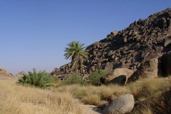 Hima, Kawasan Konservasi dalam Islam