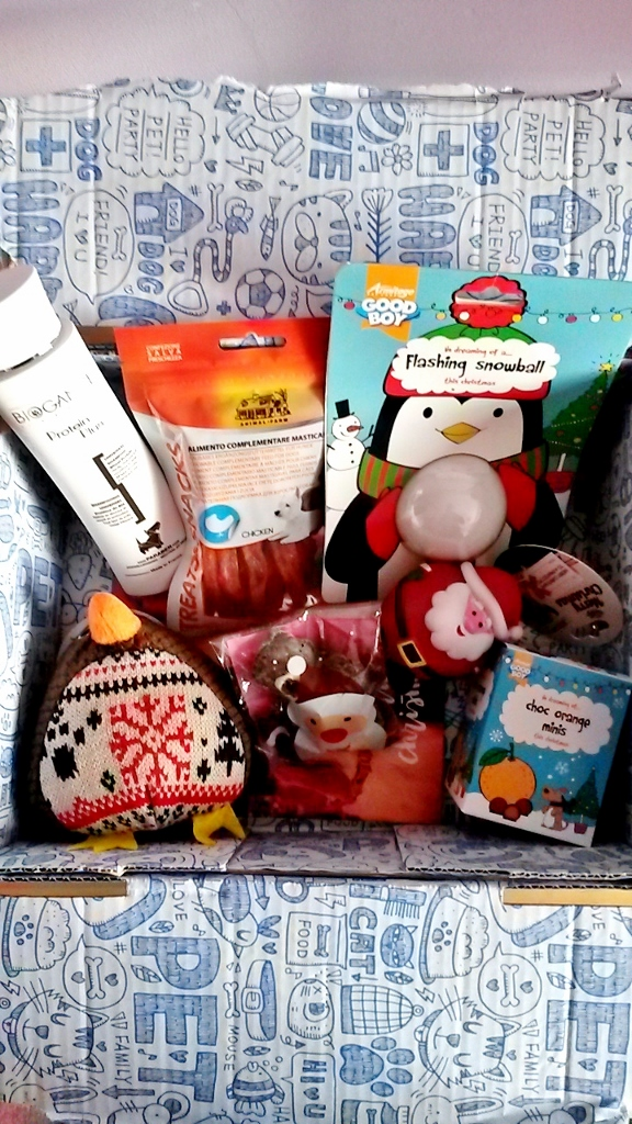 Contents of Christmas Pawsomebox for dogs