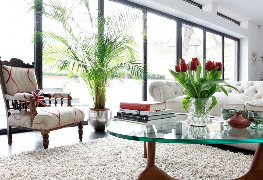 11 consigli su come arredare la casa con le piante home for Arredare la casa con gusto