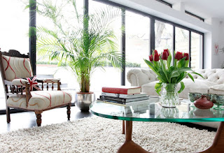 arredare casa con piante immagine