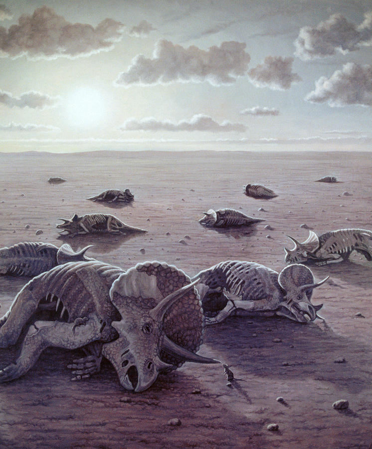 a study on the extinction of the dinosaurs Scientists have strong evidence that the chicxulub asteroid wiped out the dinosaurs 66 million years ago this event 66 million years ago produced one of the most widespread extinction events in earth's a recent study sought to better determine the magnitude of these and.