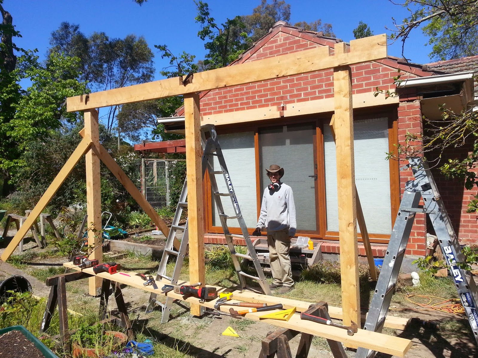 Simon Marshall Horticulture and Design: Passive solar pergola