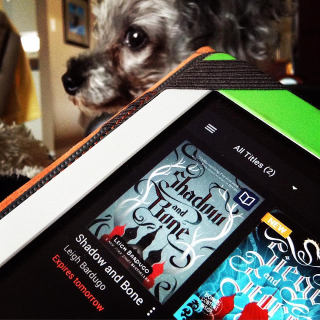 The corner of a white Kobo takes up most of the shot. Its screen holds the tiny cover of Shadow and Bone, featuring the black and red silhouette of an onion domed palace. Stylized antlers snake up either side of the cover. Murchie appears behind the Kobo, slightly blurred, with his gaze focused on something off the left side of the screen.