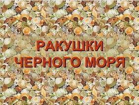kolesova-prezentatsiya-s-zadaniyami-dlya-detey-3-4-let-pro-gorod