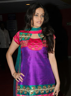 Sneha Ullal in Patiala Suit