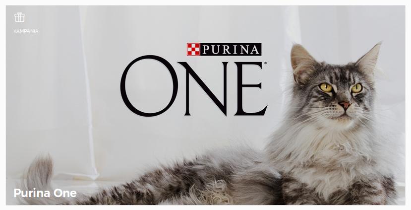 Koci ambasador w kampanii Purina One