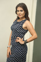 Alexius Macleod in Tight Short dress at Dharpanam movie launch ~  Exclusive Celebrities Galleries 038.JPG