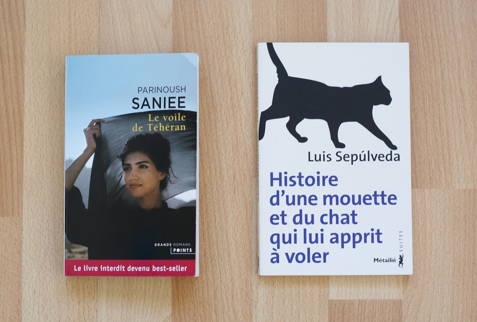 parinoush saniee voile téhéran luis sepulveda chat mouette livres books lecture reading