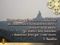 spiritualità meditazione vajra citazioni da condividere zen buddha
