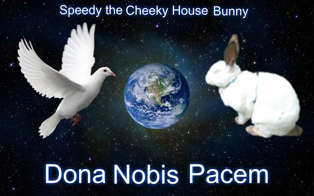 http://www.speedyhousebunny.com/2015/11/dona-nobis-pacemblog-4-peace.html