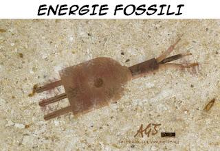 energie fossili, petrolio, referendum 17 aprile, vignetta, satira
