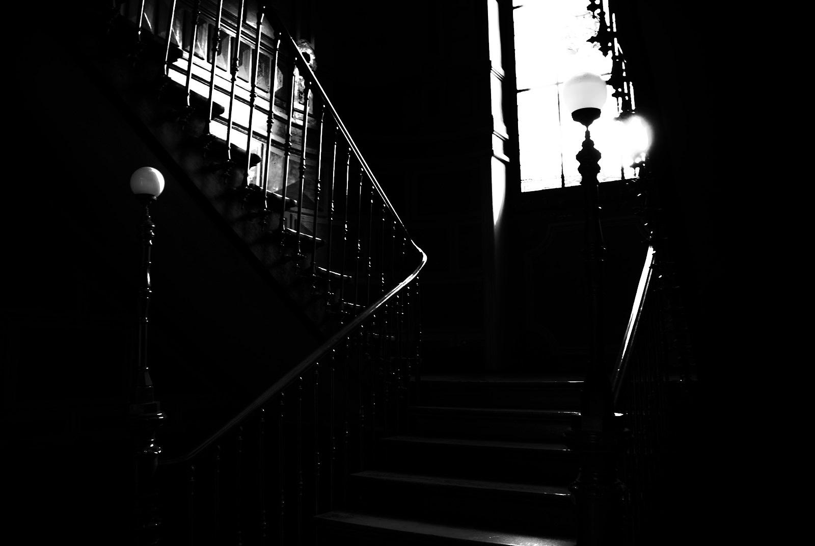 En la oscuridad 4003