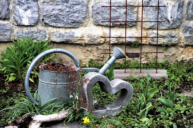 Watering Can and Heart Photograph Outdoors Gardening House Plants