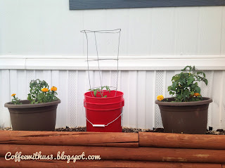 Container Gardening by Coffee With Us 3 #gardening