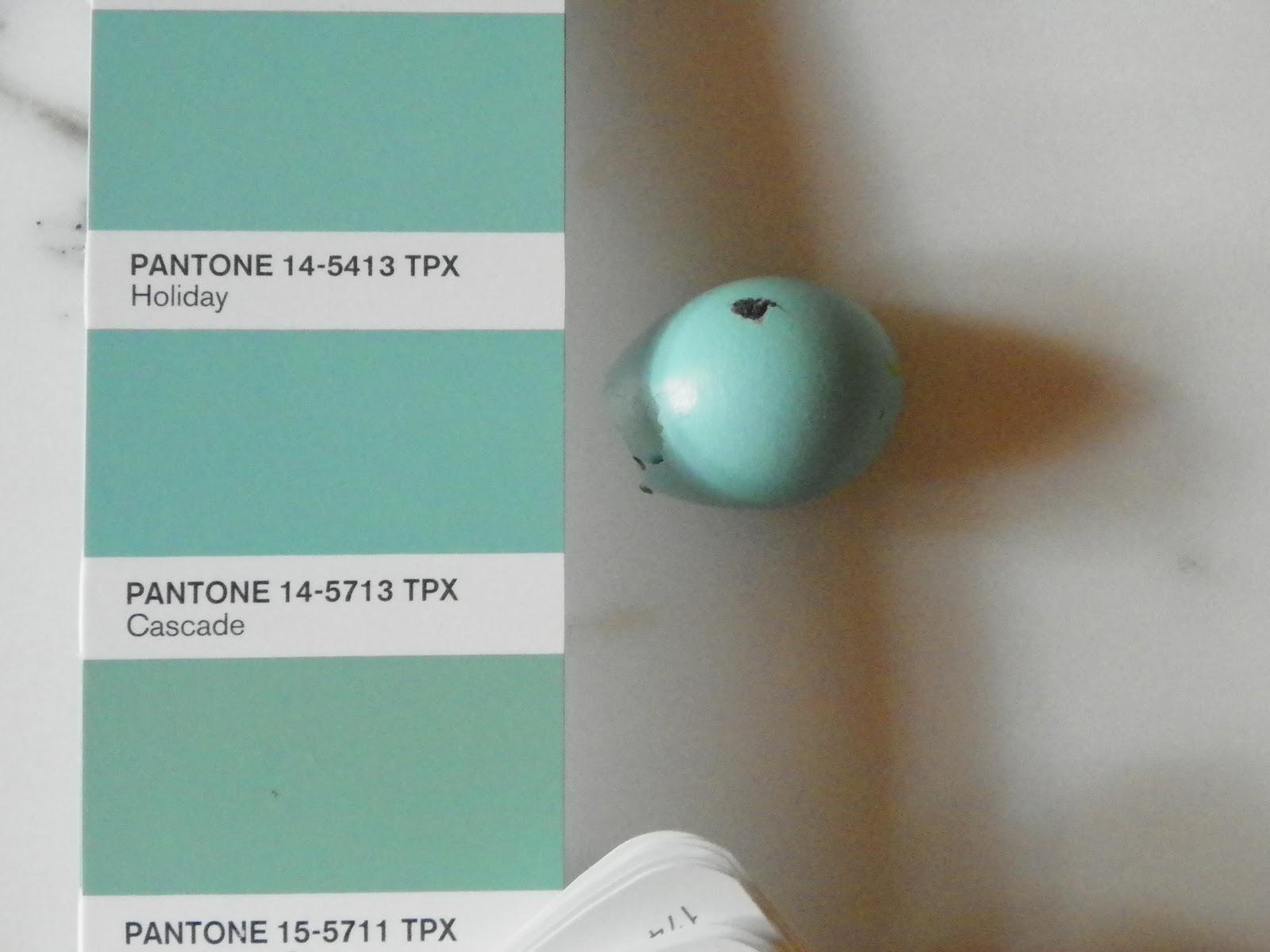 Robin S Egg Blue