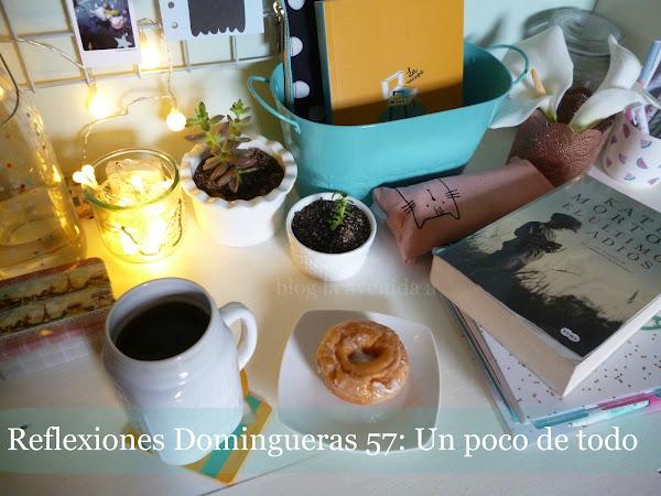 Reflexiones Domingueras 57: Un poco de todo