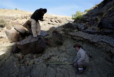 Στη Βολιβία, μια από τις μεγαλύτερες πατημασιές δεινόσαυρου