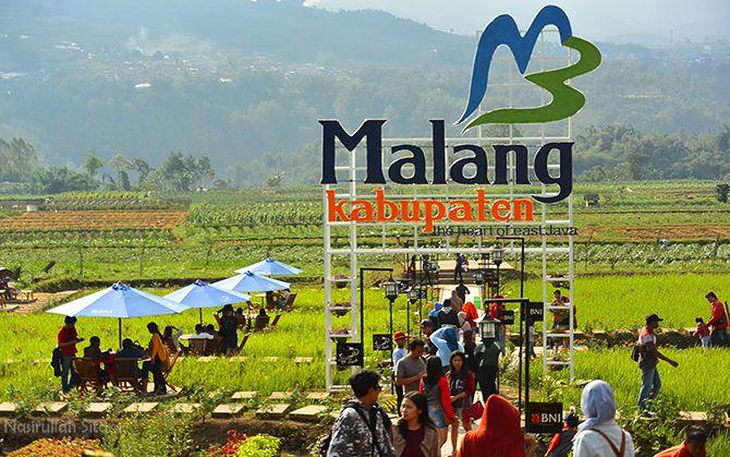 Makan Siang Di Kafe Sawah Pujon Kidul Malang Nasirullah Sitam