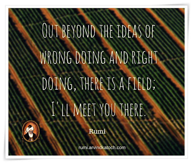 Rumi Quote, Meaning, Image, beyond, ideas, wrong, doing, right, field, Rumi,