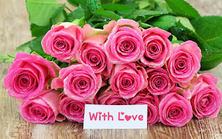 pink-roses-with-love-card-image-for-lovers-sharing-in-whatsapp.jpg