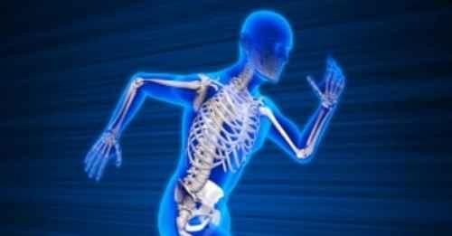 Alquran dan Sains Jelaskan Keajaiban Tulang Manusia