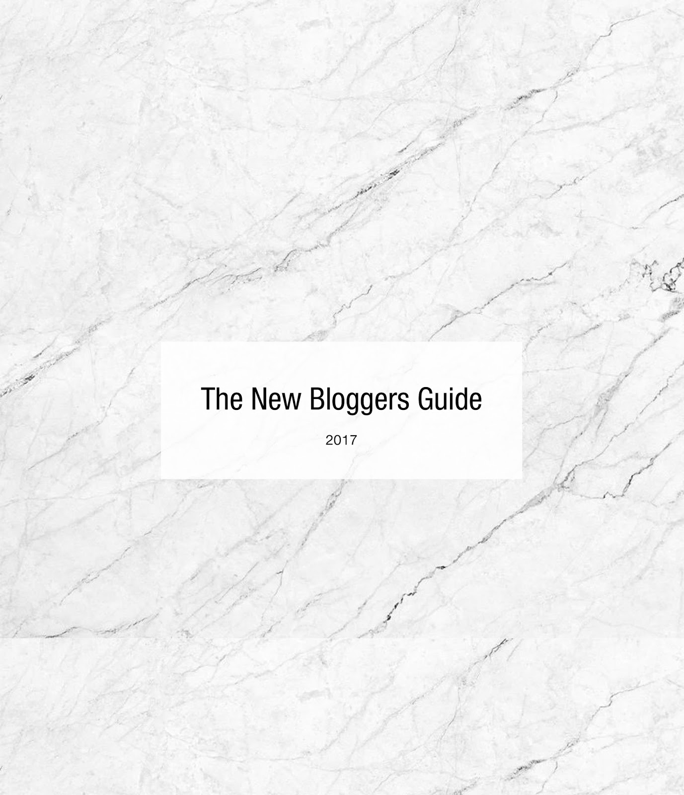 The new bloggers guide ebook