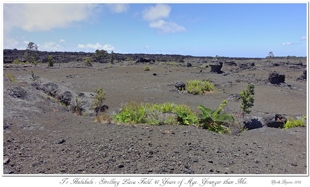 To Huluhulu: Strolling Lava Field. 41 Years of Age. Younger than Me.