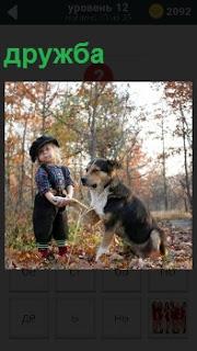 Собака дала лапу маленькому мальчику в знак дружбы на полян в лесу в знак дружбы между собой