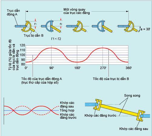 Sự thay đổi về tốc độ góc của khớp các đăng