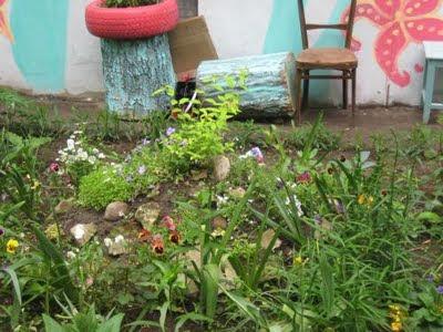цветы-во-дворе