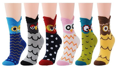 owls socks womens teachers